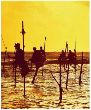 The beautiful Sri Lanka 2